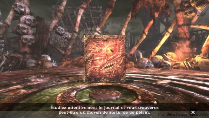 Soul Sacrifice Journal