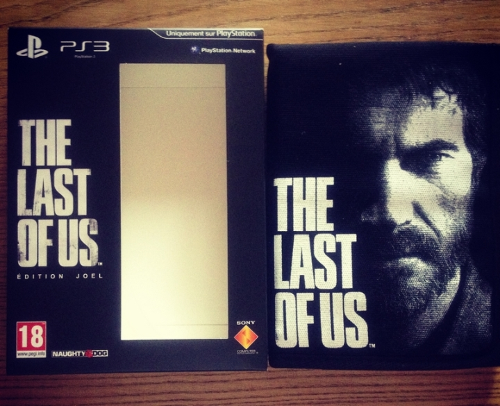 The last of us Canvas