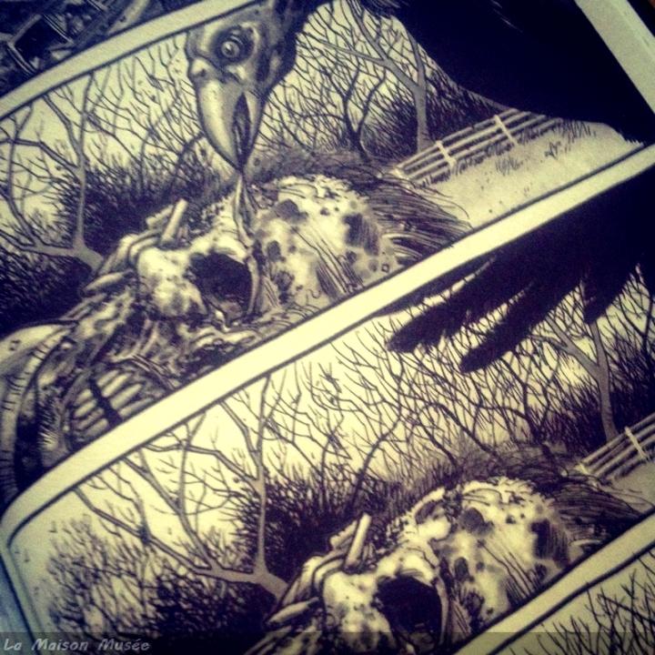 Avis Passe Decompose Walking Dead Tome 1