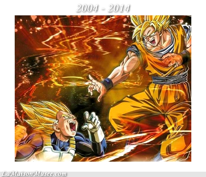 DBZ Budokai PS2 PS3 Notes Qualite