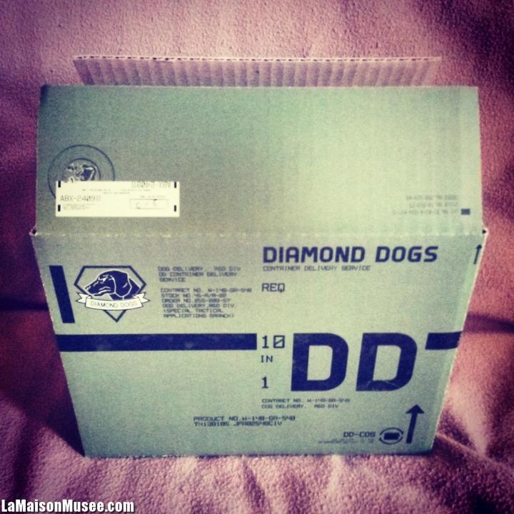 Cardboard Box MGSV TPP